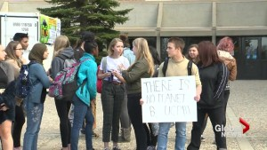 Lethbridge students join province-wide walkout over proposed changes to GSAs