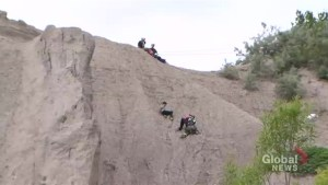 Toronto firefighters rescue 2 siblings from Scarborough Bluffs