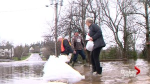 Independent group to review N.B. flood response