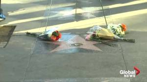 Fans pay tribute to Stan Lee at Hollywood Walk of Fame