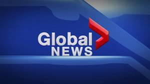 Global News at 5 Edmonton: June 5, 2019