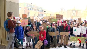 New Brunswick students protest over climate change