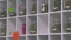 Deadline for some Vernon marijuana retailers to stop sales passes with mixed results