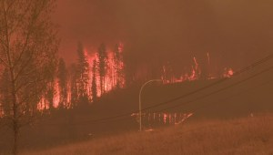 Saskatchewan prepares for wildfire to cross Alberta border