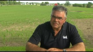 Peterborough dairy farmer fires back at  President Donald Trump