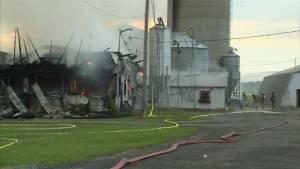 Dairy farm fire in Montérégie: 100 cows dead (00:28)