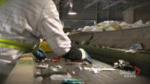 Where does Winnipeg's recycling end up?