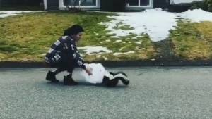 Woman frees skunk with plastic cup stuck on its head
