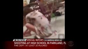 Video captures nightmare scene inside Florida high school as shooter opens fire