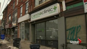 Toronto marijuana dispensary robbed at gunpoint Wednesday night