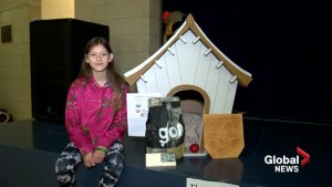 Lethbridge students build doghouses for families in need