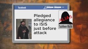Female suspect in San Bernardino mass shooting pledged allegiance to an ISIS leader on Facebook