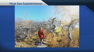 Must see Saskatchewan