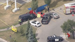 Calgary police on scene of a fatal vehicle collision
