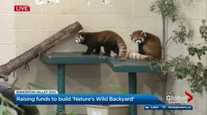 YEG Zoo Never Sleeps event at Edmonton Valley Zoo for Giving Tuesday