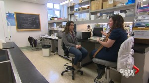 Quebec researcher finds possible new link to treat depression