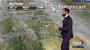 Edmonton Weather Forecast: Nov. 19