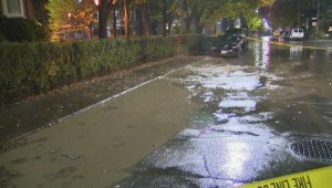 Raw video: Heavy rains cause flooding in some Toronto neighbourhoods