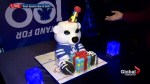 Toronto Maple Leafs celebrate 100th anniversary