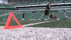 Fans play at Mosaic Stadium in support of Special Olympics