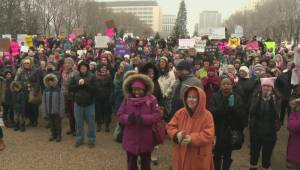 Edmontonians rally in solidarity with Women's March on Washington