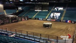 Opposition to bull riding event in Moncton