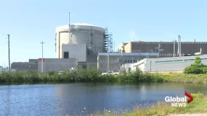Second company in N.B. nuclear technology