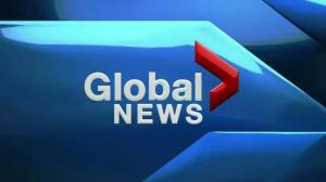 Global News at 6: November 9