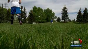Calgarians have to wait a little longer for sports fields to open up