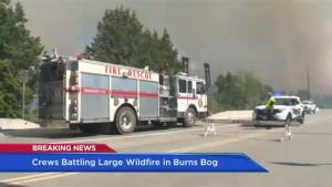Challenges of fighting aggressive Burns Bog fire (02:12)