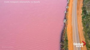 Drone captures stunning footage of Australia's 'Pink Lake'