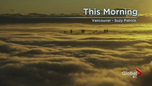 BC Evening Weather Forecast: Jan 25