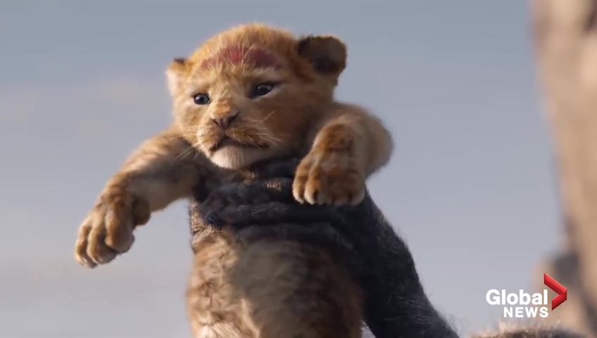 CBBC Newsround: Watch the trailer for the new Lion King movie