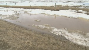 Flood situation stabilizes in Municipal District of Taber