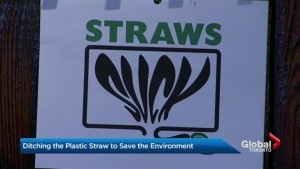 Straws suck: The environmental pitch for ditching plastic straws