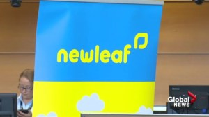 Alberta-bound passengers frustrated with NewLeaf