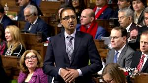 Government should trash Bill C-69 and start again: Black