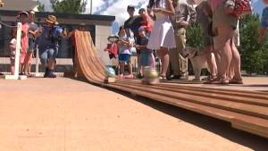 A preview of the Zucchini 500 at the Memorial Centre Farmers Market