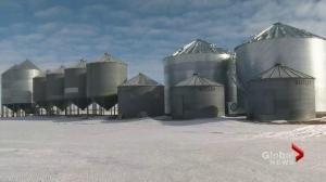 Grain bottleneck cause for concern among Saskatchewan farmers