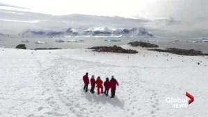 Adventures in Antartica