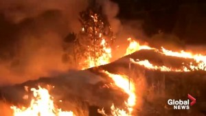 Video shows size, scope of fast-moving Delta wildfire in California