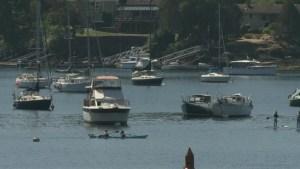 Brentwood Bay bacteria contamination