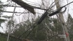 More than 40,000 New Brunswick Power customers in the dark 24 hours after storm