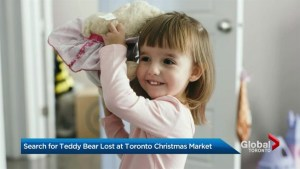 Newfoundland family asks Toronto for help finding 2-year-old's lost teddy bear