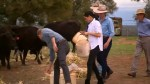 Prince Harry, wife Meghan visit community in Australia struggling from drought