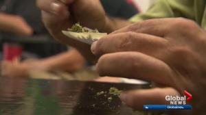 City committee discusses Edmonton pot bylaws