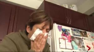 Flu Segment
