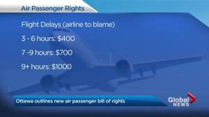 Transport Minister set to unveil new details about the bill of rights for air passengers (02:22)