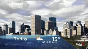 Edmonton early morning weather forecast: Thursday, June 6, 2019