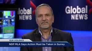 Surrey-Newton MLA Harry Bains voices frustration over gun violence